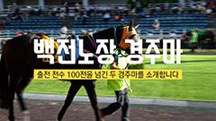 [부경] 100전을 넘긴 코리아헌터, 가락공원 썸네일 이미지