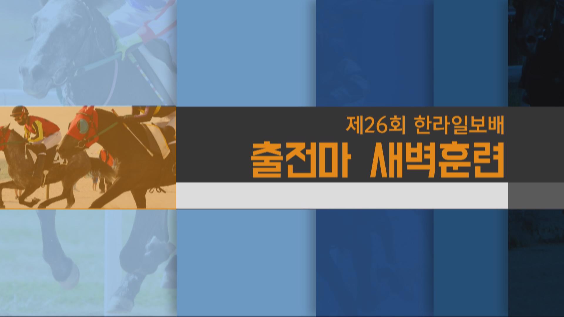 [제주]제 26회 한라일보배 새벽훈련&인터뷰 썸네일 이미지