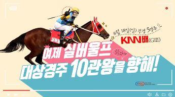 [서울]생생인터뷰2(8월18일) 썸네일 이미지