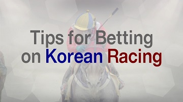 Tips for Betting on Korean Racing thumbnail image