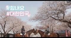 서울 경마공원 벚꽃 풍경 썸네일 이미지